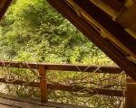 araucaria-vista-varanda